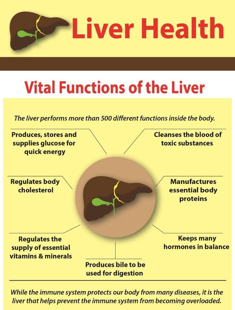 Liver Health 1